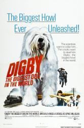 Digby plusgdchienmonde