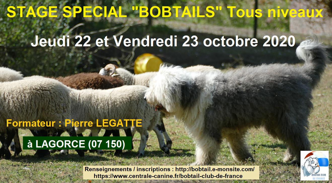 Stage spebobtail 22 23oct2020 2
